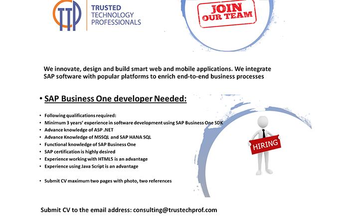 SAP Business One developer needed